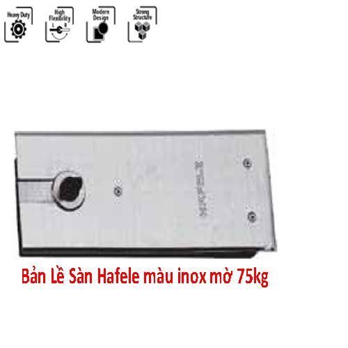 ban-le-san-mau-inox-mo-75kg, BẢN LỀ SÀN TẢI TRỌNG NHỎ